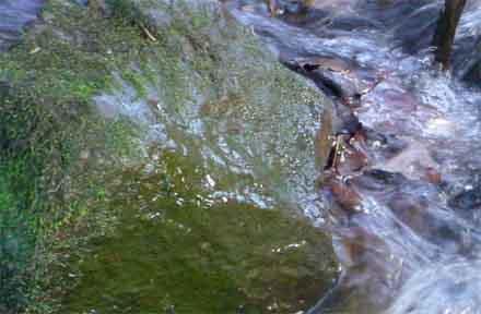 Tepelná čerpadla voda - voda: použití